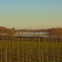 Clima, Italia a rischio desertificazione