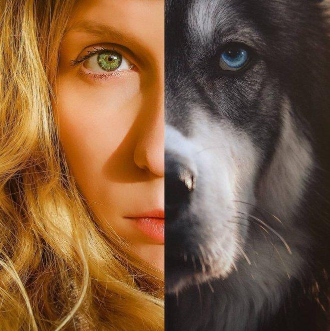 """Un Husky mi ha salvato la vita"": la rinascita della fotografa abusata"