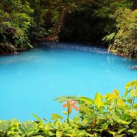 Costa Rica, miracolo della natura: il fiume si tinge d'azzurro