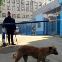 Egitto, omicidio Regeni: la camera mortuaria al Cairo