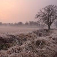 Coldiretti, allarme gelo e siccità: danni per 14 miliardi in 10 anni