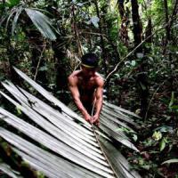 Cambiamento climatico e disuguaglianze: chi inquina meno subisce più danni