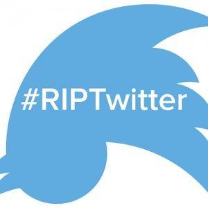 Tra polemiche e silenzi: ecco la verità su come cambierà Twitter