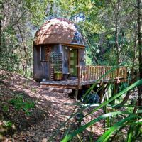 Usa, una casa eco-friendly nel bosco: è l'alloggio più richiesto al mondo su Airbnb
