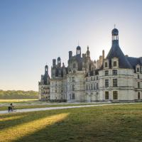 La Loira, i castelli e Leonardo da Vinci