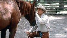 Che empatia il cavallo Sa leggere le emozioni  sul volto di un uomo