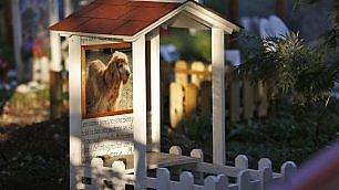 Nel cimitero degli animali una cuccia per l'eternità
