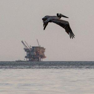 Il ritorno del greggio dall'Iran: partita la prima petroliera