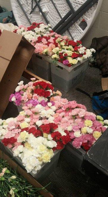 Usa, San Valentino a scuola: studente compra 900 fiori per tutte le ragazze