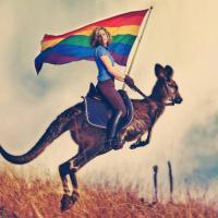 Unioni civili, Cirinnà sul canguro: la foto spopola sui social