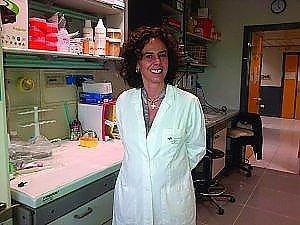 """Bonini: """"Dalle cellule ogm la terapia per battere la leucemia"""""""