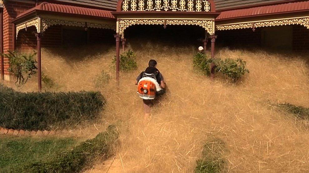 Australia, cittadina infestata da nuvole di erbaccia secca