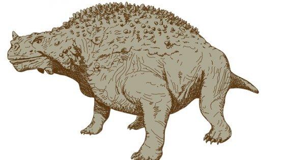 """Scoperti fossili del più """"brutto"""" antenato dei dinosauri"""