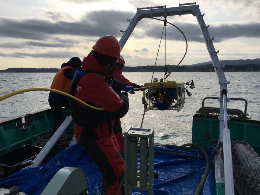 Fukushima 5 anni dopo: le analisi di Greenpeace sullo stato delle acque