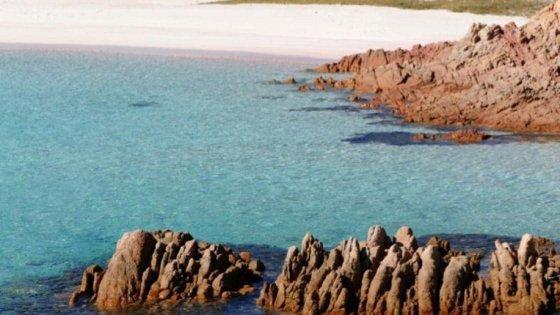 Sardegna, Wwf a sostegno degli studenti piemontesi per l'acquisto Budelli