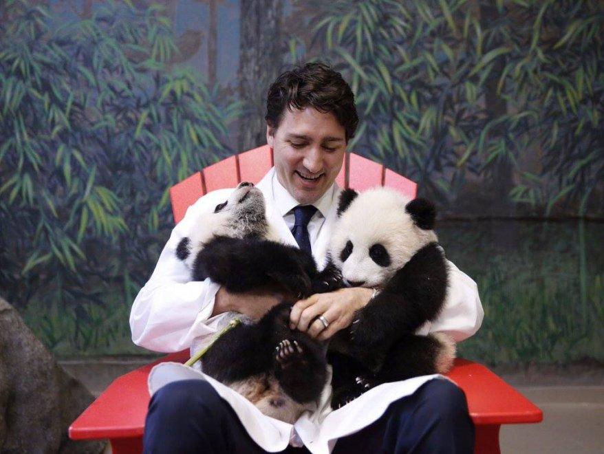 Justin Trudeau abbraccia i panda: la foto su Facebook