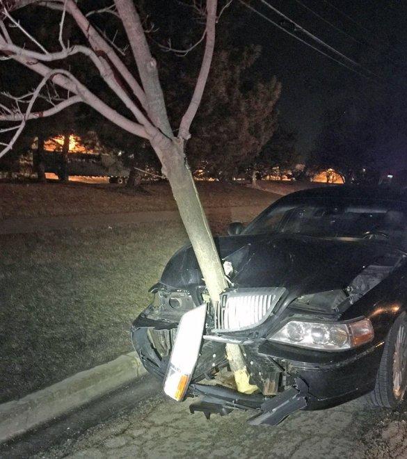 """Usa, in giro per la città con un albero nel cofano. La polizia: """"Non bevete quando guidate"""""""