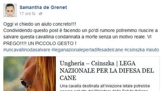 """""""Csinska non deve morire"""", l'appello delle star dello spettacolo su Facebook"""