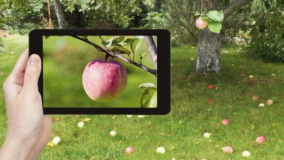 Altroconsumo, class action per la memoria di smartphone e tablet