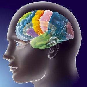 """Il """"doping"""" del cervello avvantaggia gli atleti"""