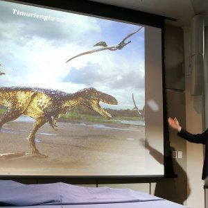 Ecco perché il T-rex era il dinosauro più grande e cattivo