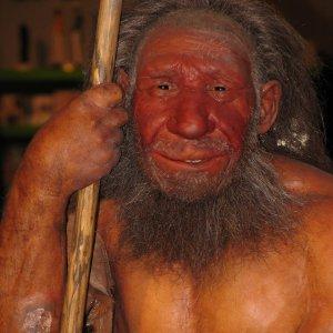 Dna dell'uomo di Denisova sopravvive nelle popolazioni della Melanesia