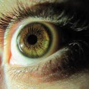 Garante Privacy: no al riconoscimento facciale per la richiesta di finanziamenti
