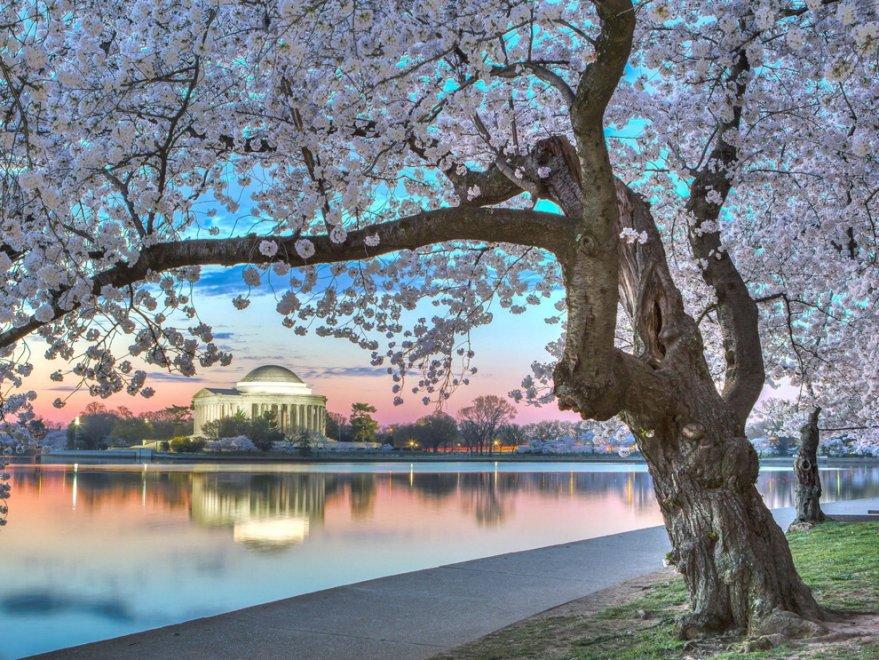 Coast to coast su Instagram tra i parchi Usa, le foto più belle dall'account del Governo - Repubblica.it