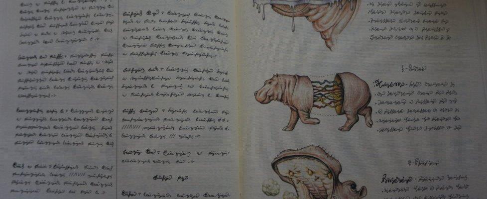 La nuova vita del Codex Seraphinianus, il libro più strano del mondo