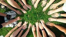 Collaborare ci gratifica e questo accade grazie a un ormone /   Foto
