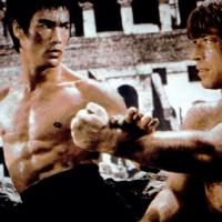 Tra il panda e Bruce Lee non c'è