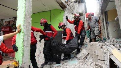 """Terremoti in Giappone e in Ecuador. """"Non è certo il rapporto causa-effetto"""""""
