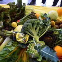 Broccoli e mozzarella dall'estero, ecco i cibi più tossici
