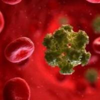 Hpv, il vaccino contro il Papilloma virus è utile anche per i ragazzi