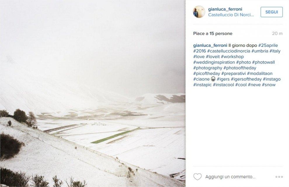 Maltempo, nevica da nord a sud: fiocchi sulla fioritura di Castelluccio