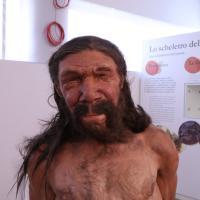 Da un team di paleo-artisti, il volto dell'uomo di Altamura