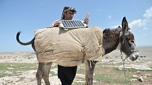 Turchia, pannelli solari sui muli per caricare lo smarphone: i pastori 2.0