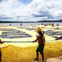 Quelle dighe che mettono a rischio l'Amazzonia e le popolazioni indigene