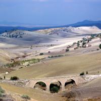Il fascino dei campi di grano antico nei paesaggi di Sicilia