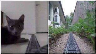 Sul treno di Lego tra gatti e cani E il giardino sembra una foresta