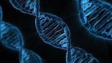 Microsoft studia il DNA per salvare dati