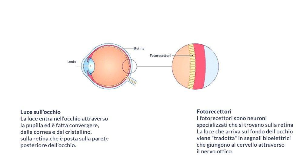 La terapia genica per prevenire la cecità