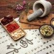 """Cina vieta la vendita  di animali e piante rare Le proteste: """"A rischio  medicina tradizionale"""""""