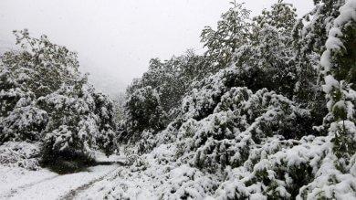 Maggio inizia sotto la neve: 50 centimetri in Val di Lanzo