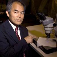 """Il premio Nobel che inventò il Led: """"La mia lampadina salverà il mondo"""""""