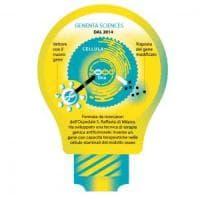 Le start up made in Italy che disegnano il futuro biomedico