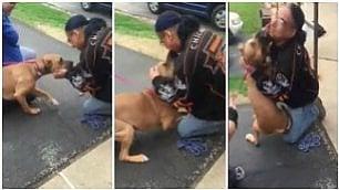 Senzatetto ritrova il suo cane Incontro commovente dopo 2 anni