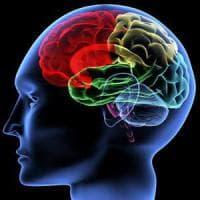 Trovato nel cervello
