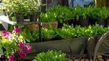 Ville in fiore: sette mete per tuffarsi nella natura