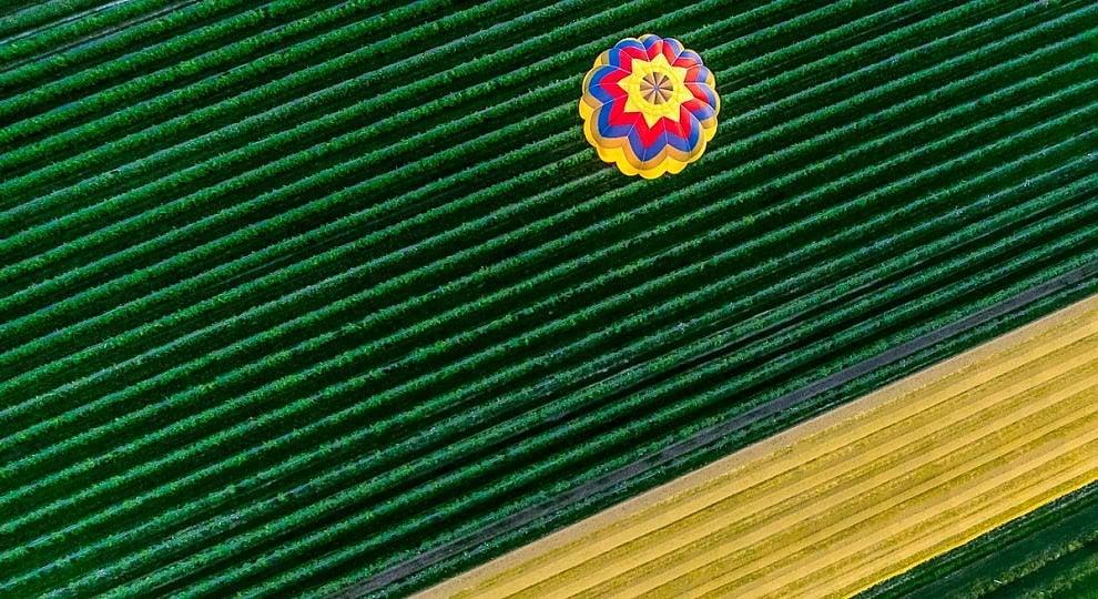 Ft . L'Italia dall'alto: colori e geometrie catturati in volo